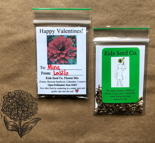Valentine's Day Seed Pack Card- Kids Seed Co. Flower Mix