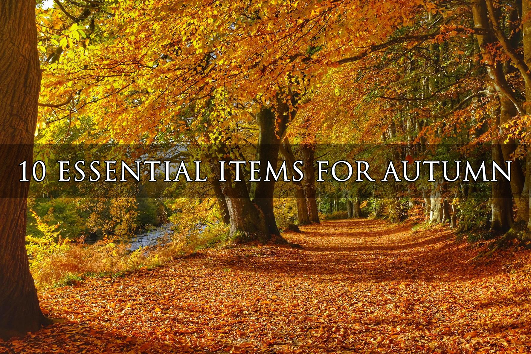 10 Essential items for Autumn!