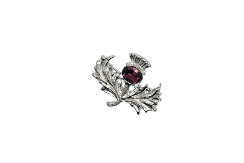 Broad Lead Thistle Design Brooch with Amethyst Stone