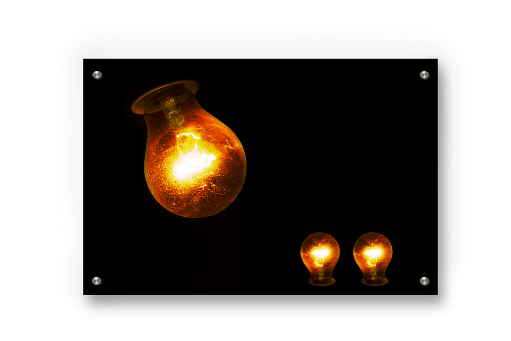 Bulb Family Metal Wall Art Decor printed on Brushed Aluminum