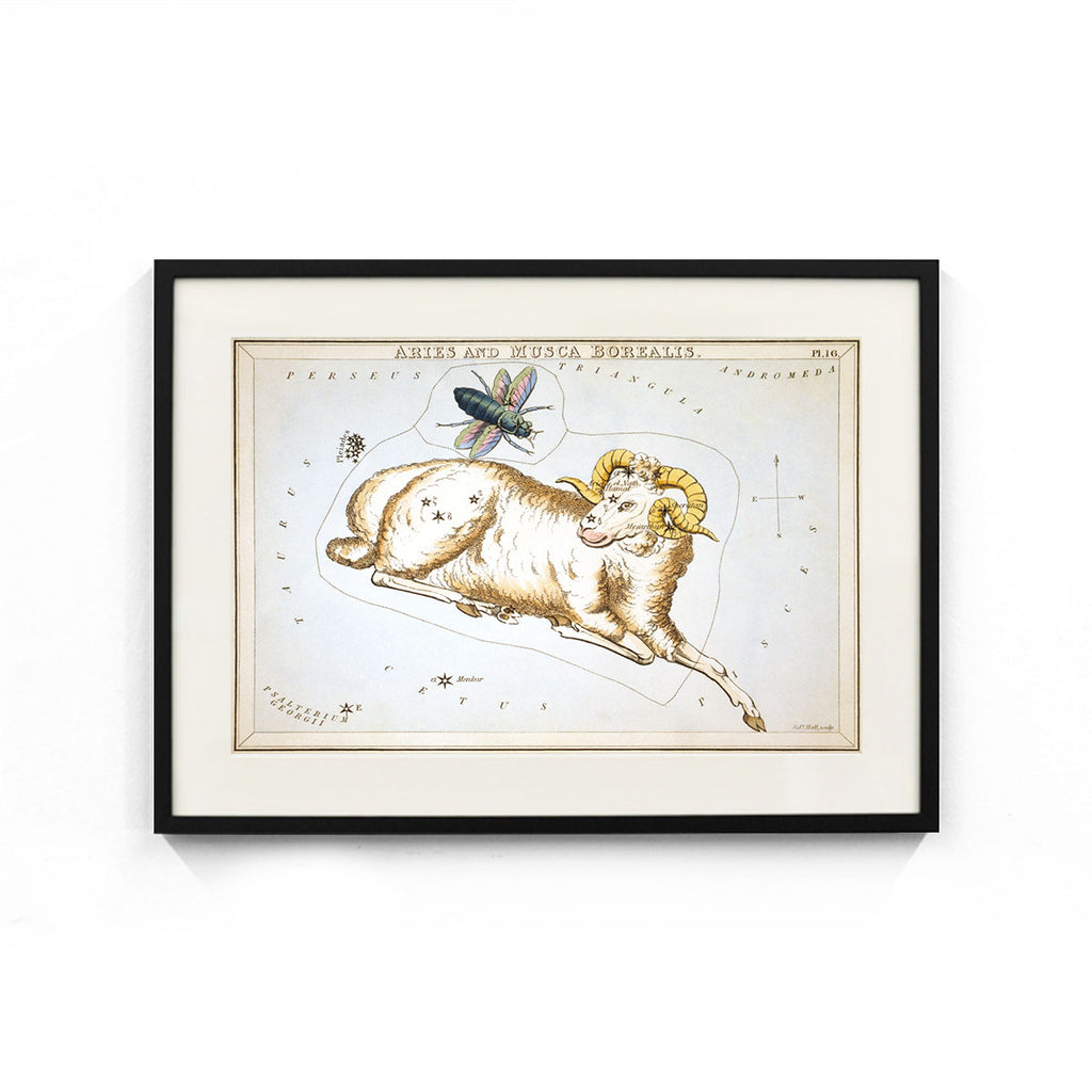 Aries and Musca Borealis Constellation (Urania's Mirror) Wall Art