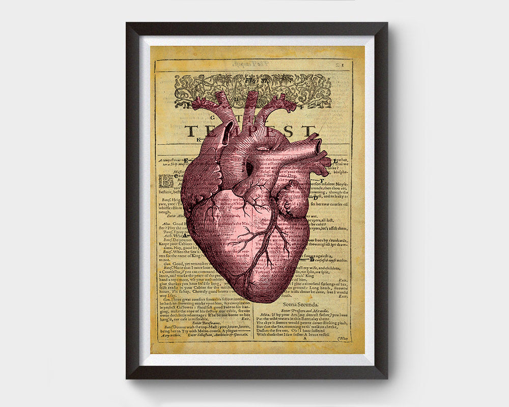 Vintage Heart Anatomy, the Tempest Inspired Art Poster