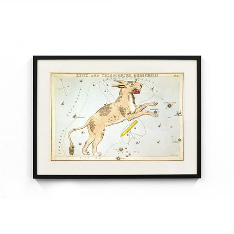 Lynx and Telescopium Herschilii Constellation (Urania's Mirror) Wall Art