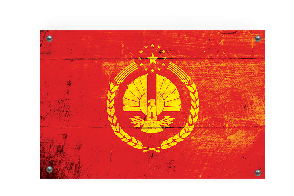 The Capitol of Panem (Hunger Games) Flag Graffiti Wall Art