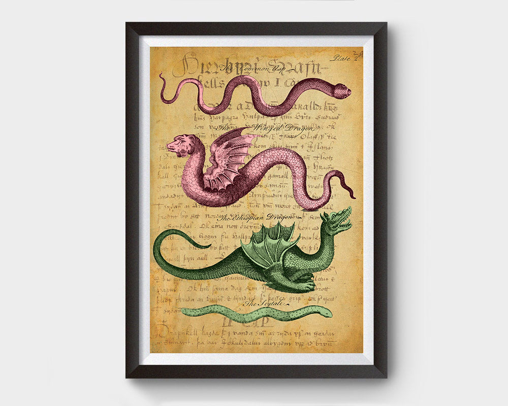 Vintage Serpents & Dragons with Latin Writings Inspired Art Poster