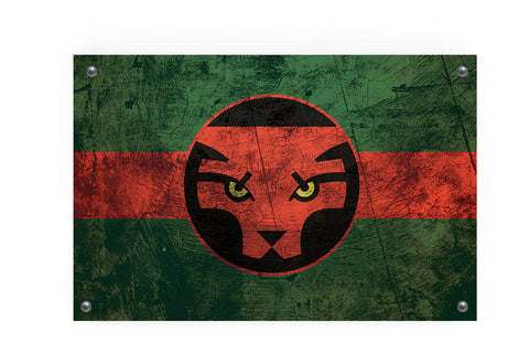 Wakanda (Black Panther) Flag Graffiti Wall Art