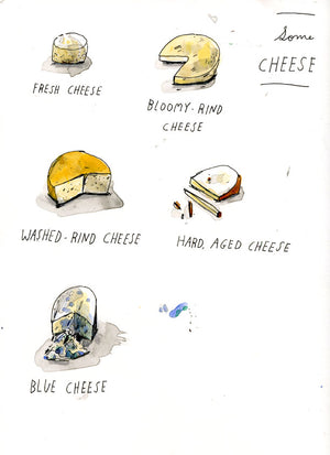 Some cheese, watercolor drawing