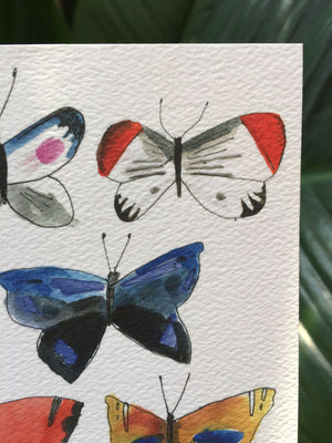 "Butterfly Print 9"" by 12"""