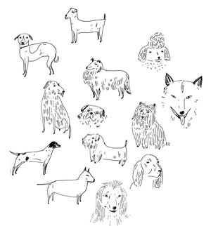 Elizabeth Graeber dogs illustration
