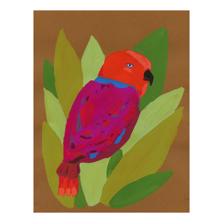 Maroon + Red Parrot