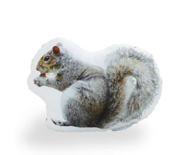 New York City Squirrel Pillow