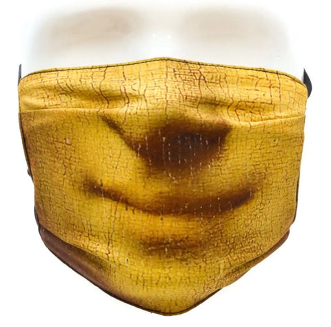 Face Mask: Talking Head Mona Lisa