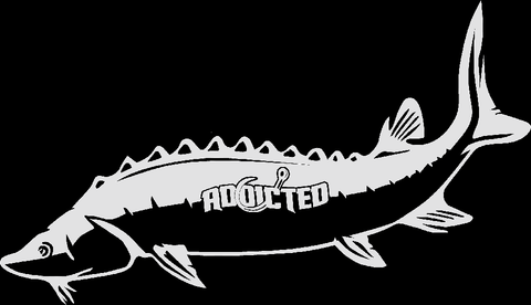 Sturgeon Decal White