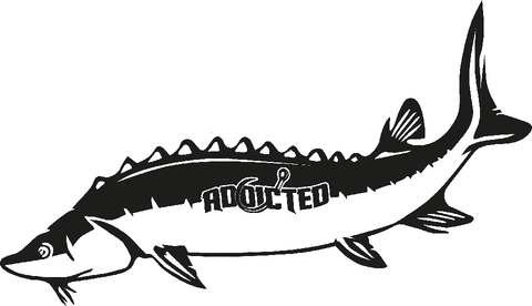 Sturgeon Decal Black
