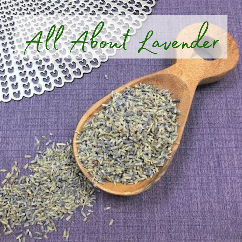 All About Lavender Class