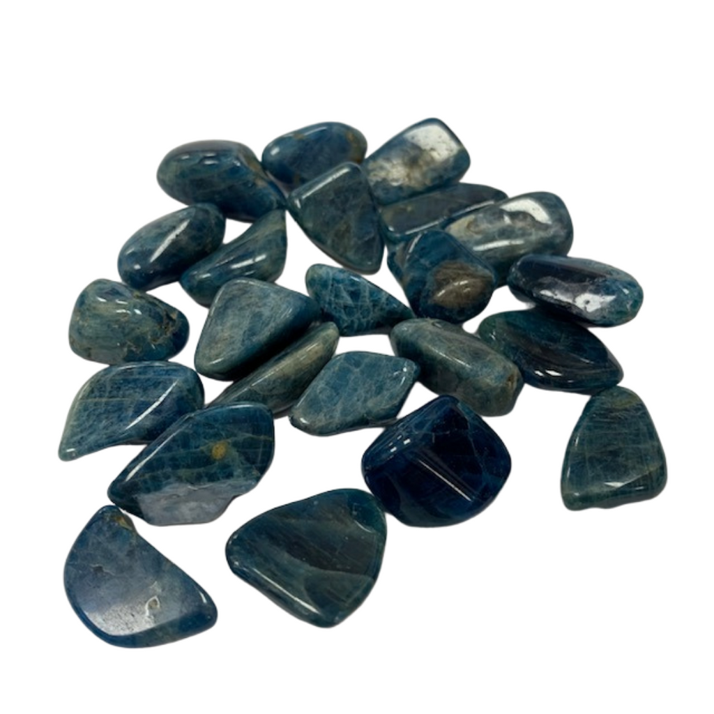Blue Apatite - Reiki infused tumbled stones