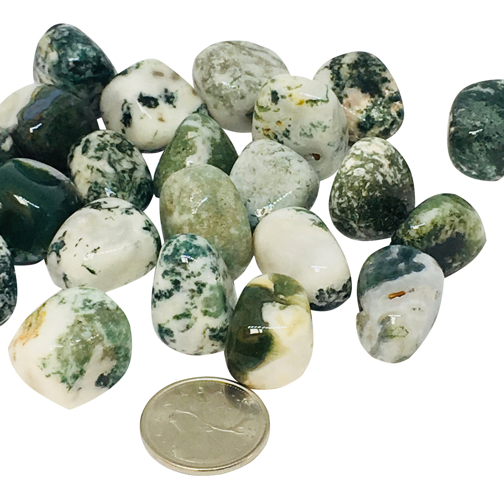 Tree Agate - Reiki infused