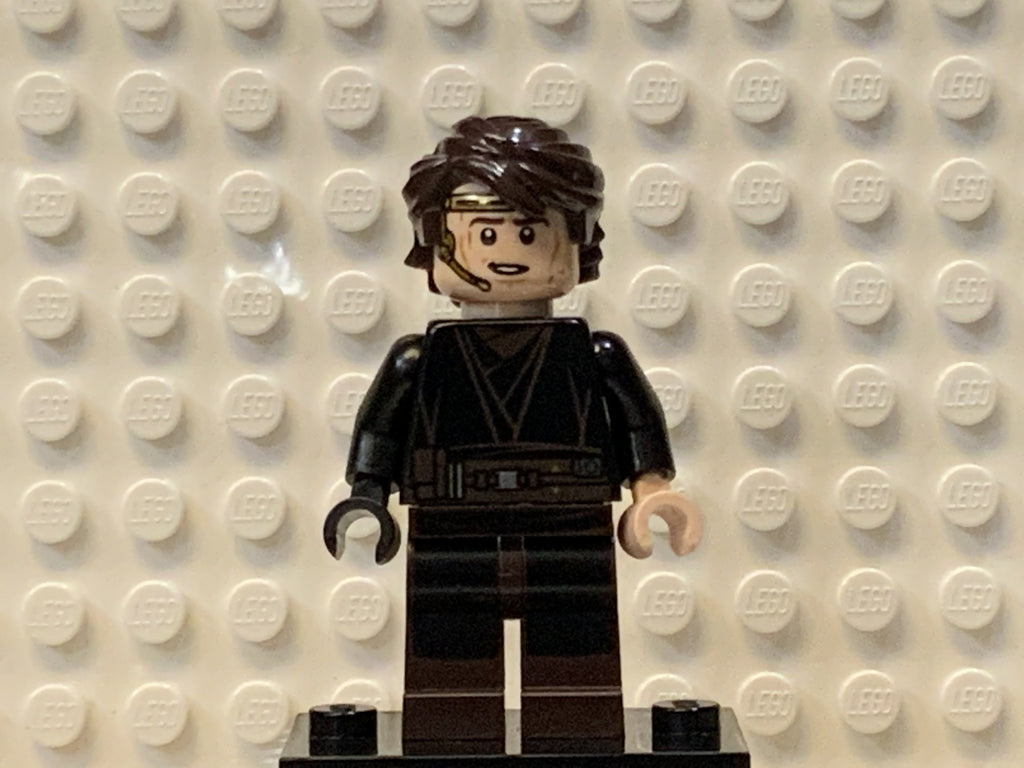 Anakin Skywalker, sw0361