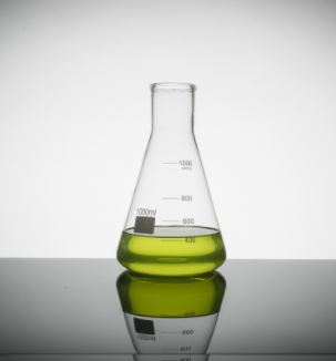 1000ml Erlenmeyer Flask