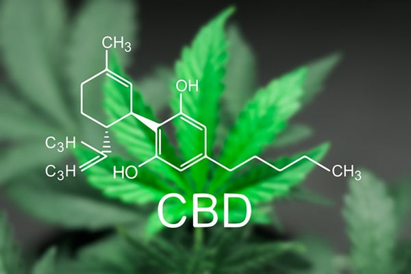 benefits of CBD, cbd for health, snowboard health, snowboard fit