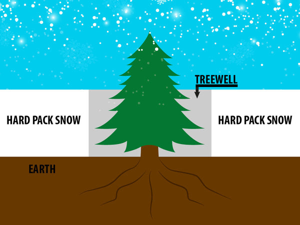 tree wells, tree well, snowboarding safety
