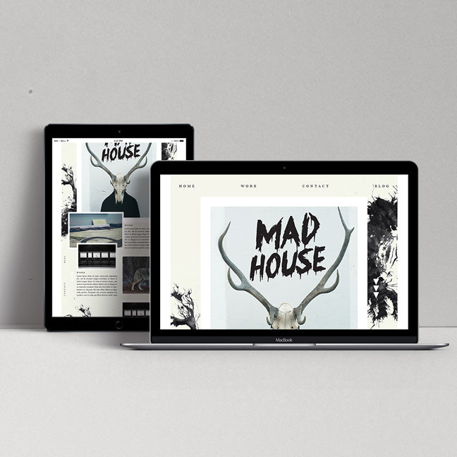 WEB DESIGN | THE MAD HOUSE