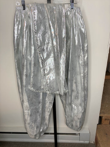 Harem pants set with veil ~ silver metallic