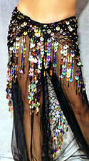 Sheer Harem Pants from Unicorn Belly Dance Supplies