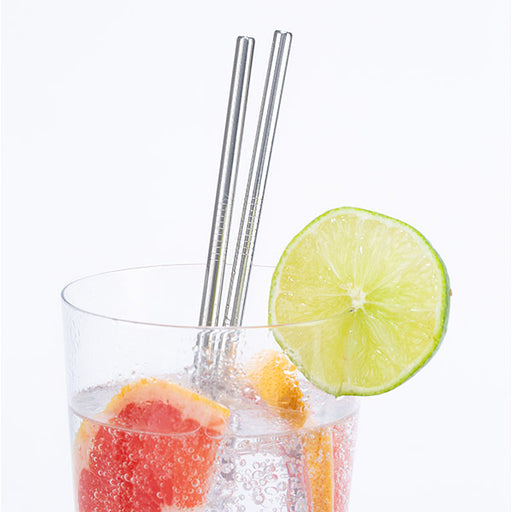 Kikkerland Set of 10 Stainles Steel Straws with Cleaner