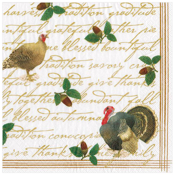 Founders' Thanksgiving Paper Beverage Napkins