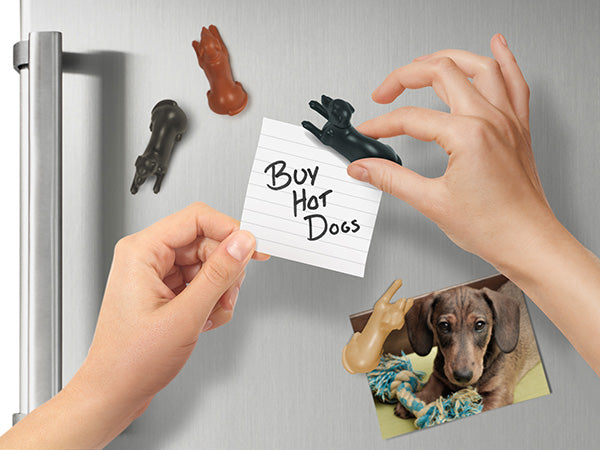 Fred Set of 4 Magnetipups™ Dog Magnets
