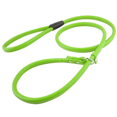 Braided Leather Round Show Slip Collar and Leash - Leash I Love Frenchie Bulldogs