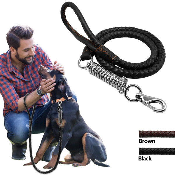 Braided Leather Dog Training Leash - Leash I Love Frenchie Bulldogs