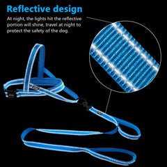 Reflective Nylon Martingale-Style Training Harness with Double Loop Training Leash - Harness I Love Frenchie Bulldogs
