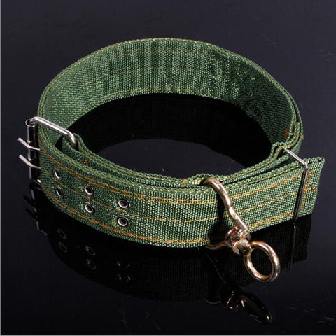 Army Green Canvas Pet Dog Collar