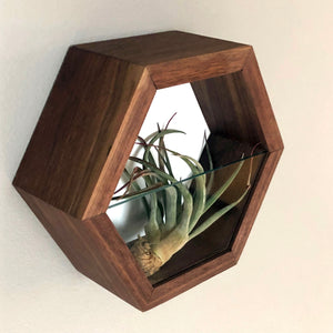Hexagonal Display Nook