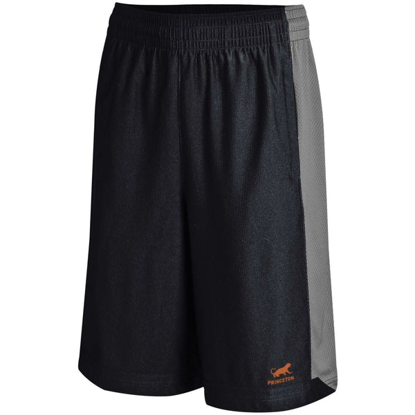 Princeton - Under Armour - Isolation Shorts
