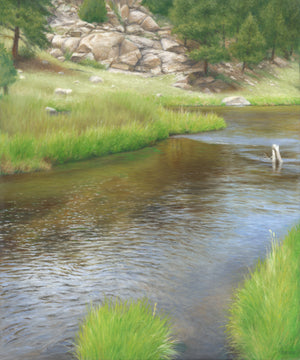 Afternoon on the South Platte