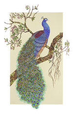 "Kathy Crowther, ""Perched Peacock,"" Gouache"