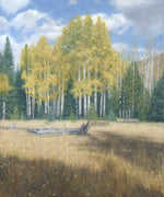 "Chris Hureau, ""Rocky Mountain Meadow,"" Oil"