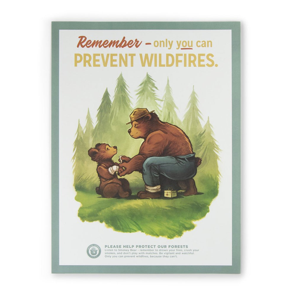 The Landmark Project Prevent Wildfires Poster