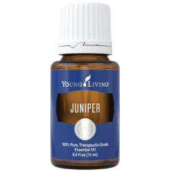 Juniper Essential Oil 15ml - WyldekardeWorld