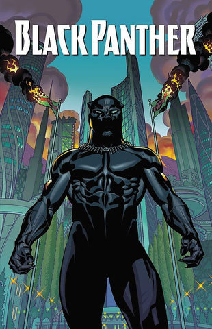Black Panther: A Nation Under Our Feet Book 1 Paperback - WyldekardeWorld