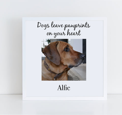 Dogs Leave Pawprints On Your Heart Personalised pet memorial photo frame