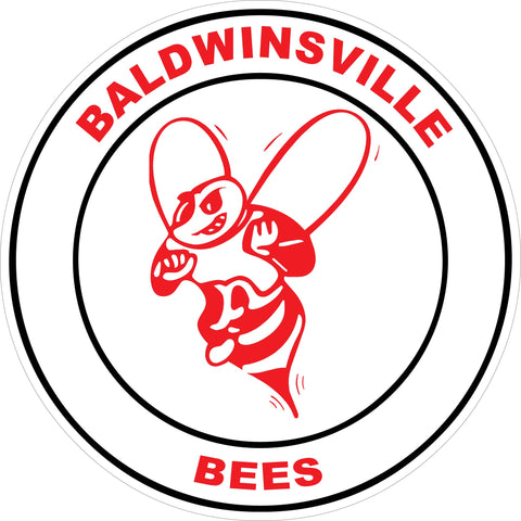 """Baldwinsville Bees"" Circle Decal (Line Art)"