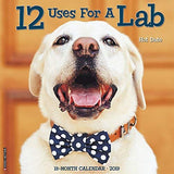 2019 Wall Calendar - 12 Uses for a Lab