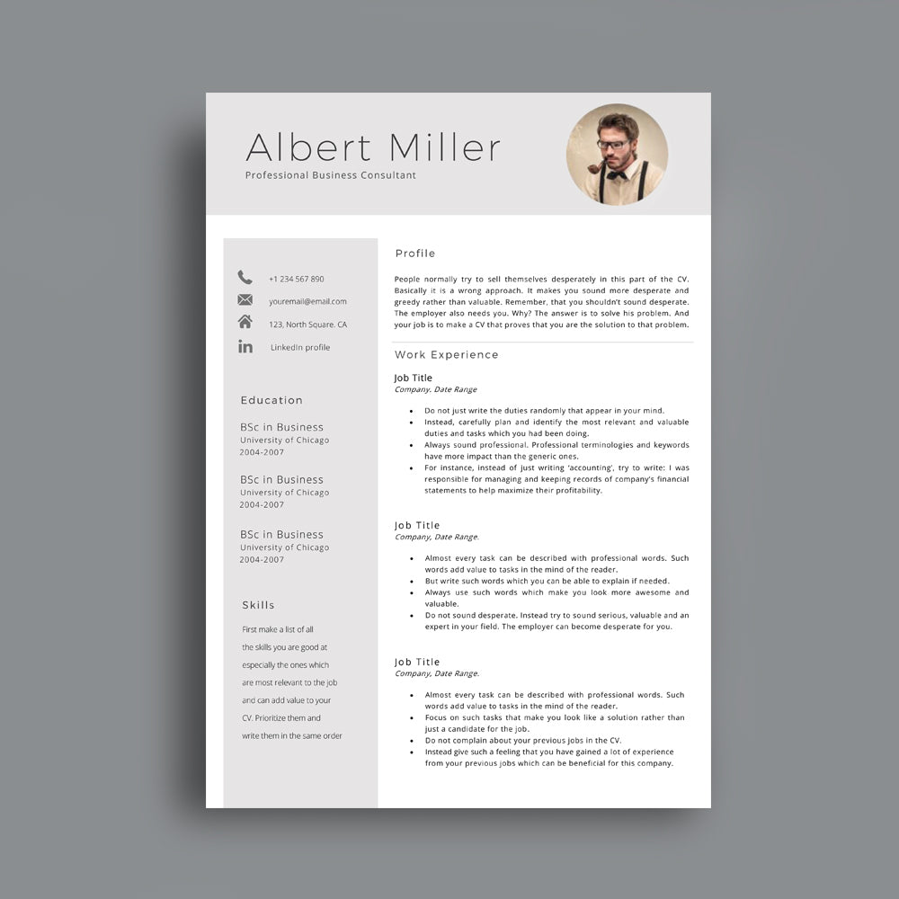 professional cv template   cover letter  editable in ms