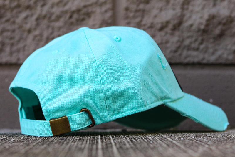 TEARS AND DOLLARS HAT MINT