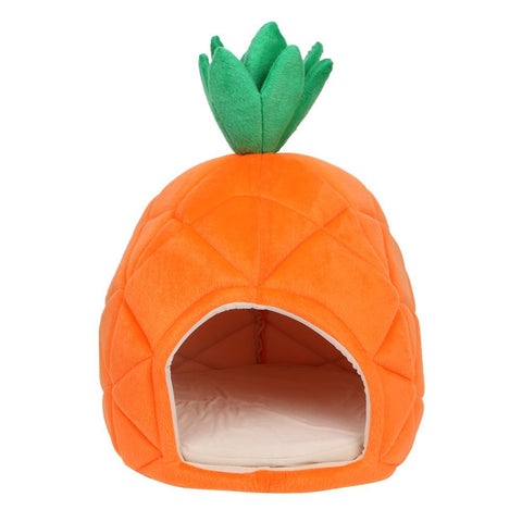 Pineapple Shaped Pet House