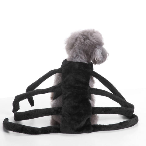 Spider-dog Costume 50% OFF
